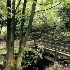 Buckden Woods bridge - Stubbins