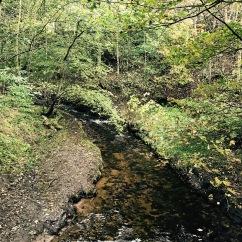 Edale River