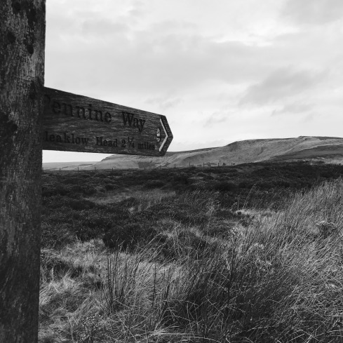Pennine Way sign Ashop Moor
