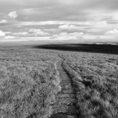 Ashop Moor slabs